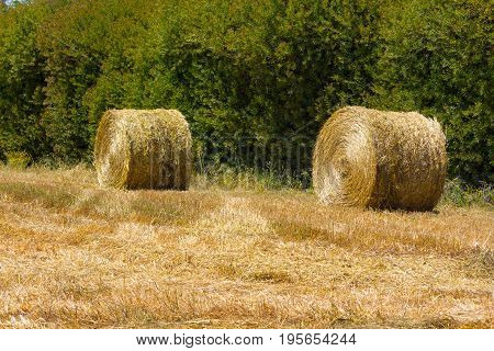 Hay Pile In A Farm Field In Vale Seco, Santiago Do Cacem