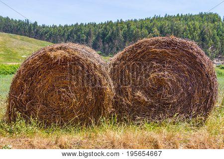 Hay pile in a farm field in Vale Seco Santiago do Cacem Alentejo Portugal