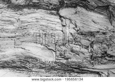 Wood texture. Gray timber board with weathered crack lines. Natural background for shabby chic design. Grey wooden floor image. Aged tree surface close-up backdrop template