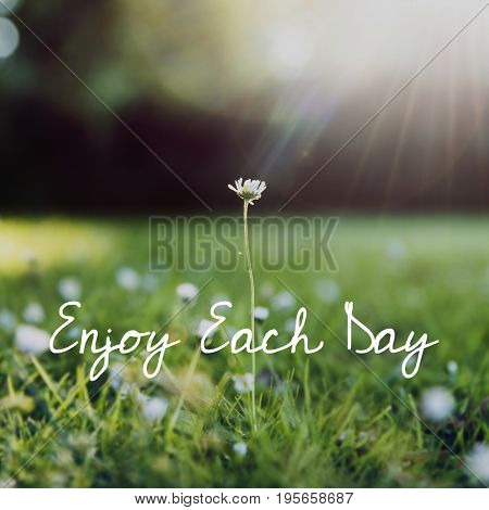 Enjoy life happiness positive attitude word on flower background