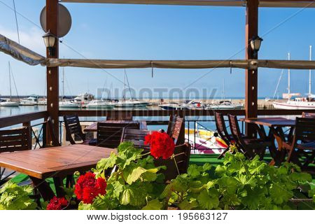 Flower in flower pot at outdoors cafe overlooking the yachts and pleasure boats in the resort city Balchik.