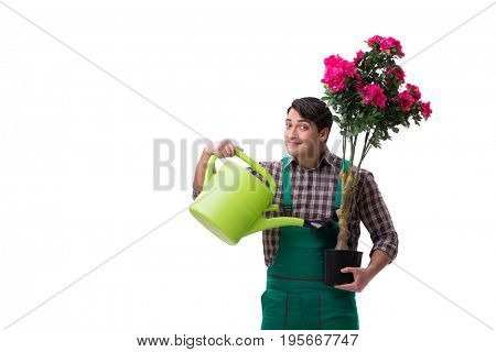Young man gardener isolated on white