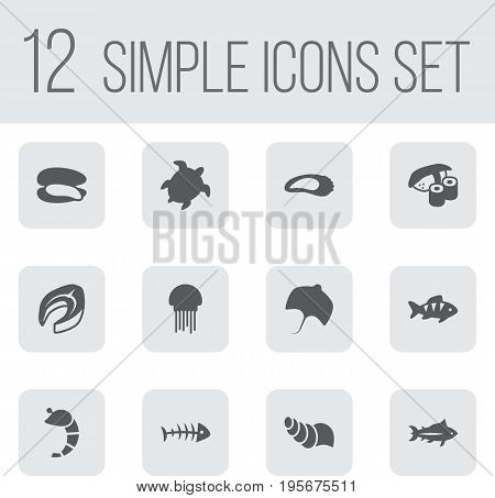 Set Of 12 Sea Icons Set.Collection Of Tunny, Fish, Tortoise And Other Elements.