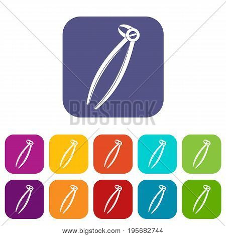 Tooth dentist forceps icons set vector illustration in flat style In colors red, blue, green and other