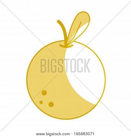 silhouette delicious orange fruit with vitamins and protein vector illustration