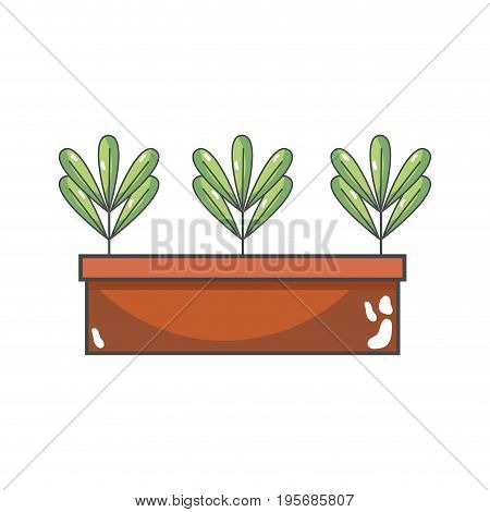 ecological plant with leaves inside flowerpot vector illustration