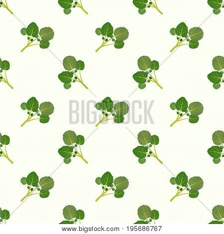 Seamless Background Image Colorful Watercolor Texture Vegetable Food Ingredient Watercress