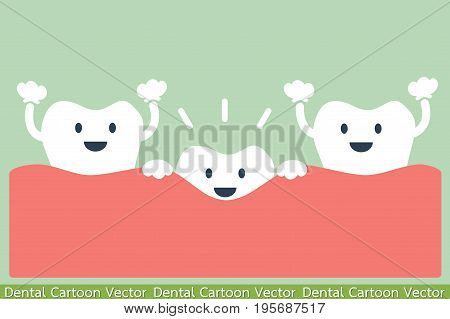 dental cartoon vector - first teeth or baby teeth
