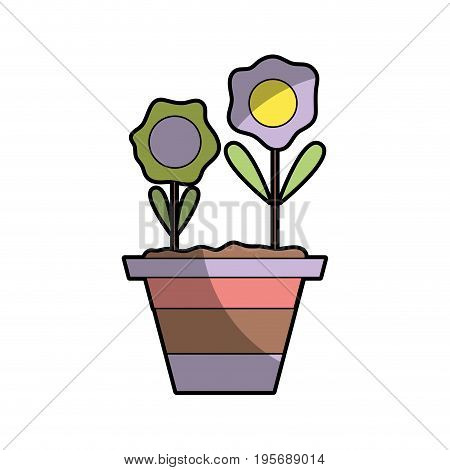 flowers with petals and leaves inside plantpot vector illustration