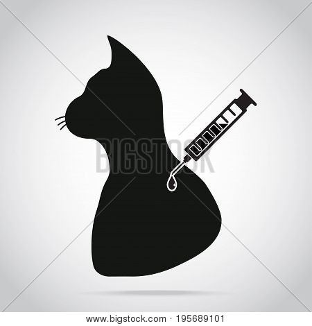 Cat vaccine to prevent illness icon medical concept