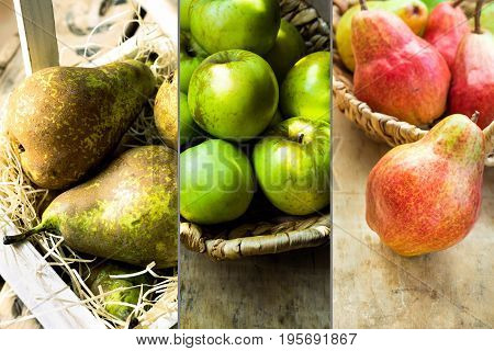 Photo collage autumn seasonal fruits red and brown pears green organic apples in wicker basket farming harvest thanksgiving cozy authentic atmosphere
