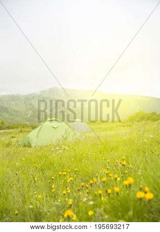view of tourist tent on green meadow at sunrise or sunset. Camping background with copy space. Tent on the hill near the river. Adventure travel active lifestyle freedom concept. Summer landscape