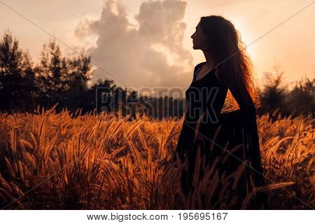beautiful young woman in dress silhouette on sunset