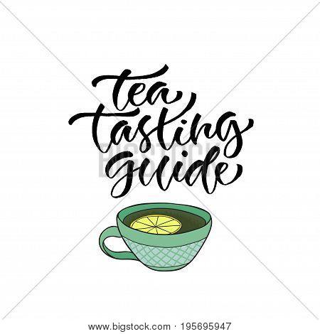 Tea tasting guide. Vector calligraphy for menu. Modern hand-lettered print design