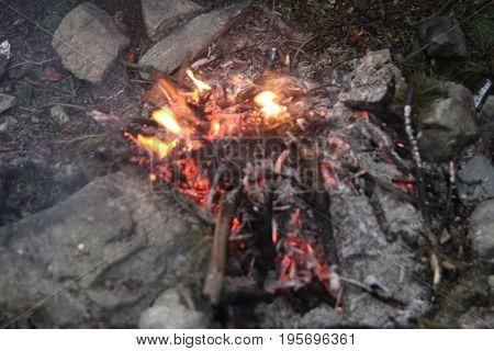 Bonfire burning trees at night. Bonfire burning brightly heat,big bonfire, very closeup capture