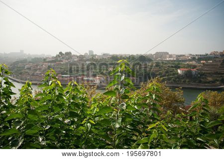 View to the river Douro from high hill, Portugal, Porto