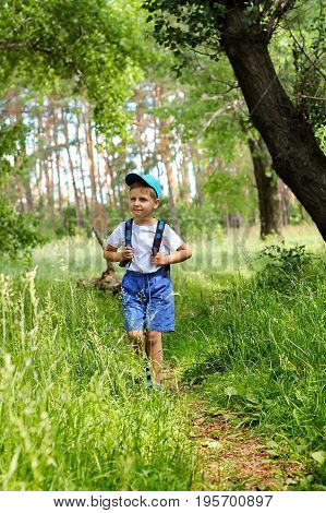 Little boy is walking through the forest