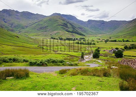 Rural green landscapes in Lake District National Park, England, stone wall, cows, mountains on the background, selective focus