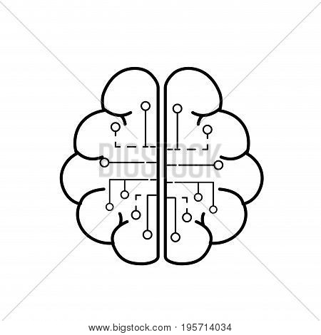 line anatomy brain with circuits digital connection vector illustration