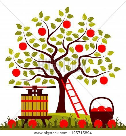 vector apple tree, fruit press and basket of apples