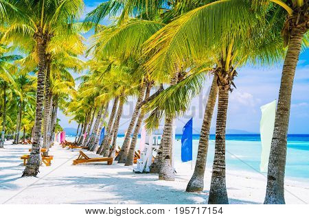 Tropical beach at Panglao Bohol island with chairs on the white sand beach with blue sky and palm trees. Travel Vacation.
