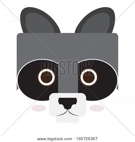 Isolated face of a raccoon, Vector illustration