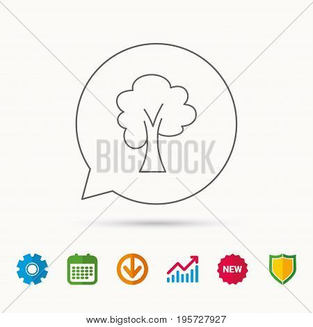 Maple tree icon. Forest wood sign. Nature environment symbol. Calendar, Graph chart and Cogwheel signs. Download and Shield web icons. Vector