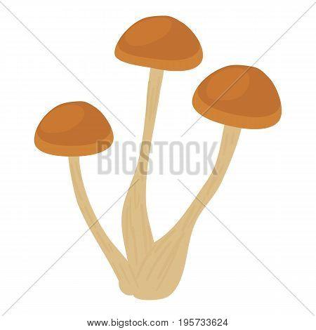 Honey agaric icon. Cartoon illustration of honey agaric vector icon for web