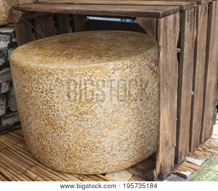 A Large Round Of Cheese