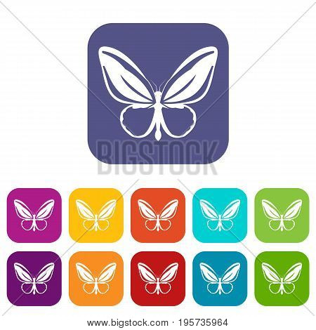 Butterfly icons set vector illustration in flat style In colors red, blue, green and other