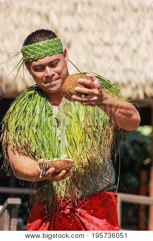 Honolulu Hawaii - May 27 2016:A Samoan man demonstrating water inside a coconut in the village of Samoa at the Polynesian Cultural Center.