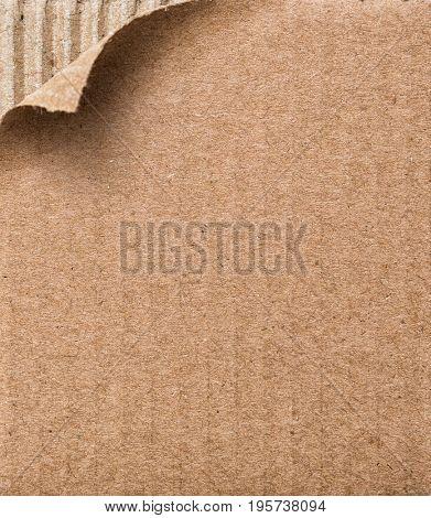 Sample cardboard -A piece of cardboard