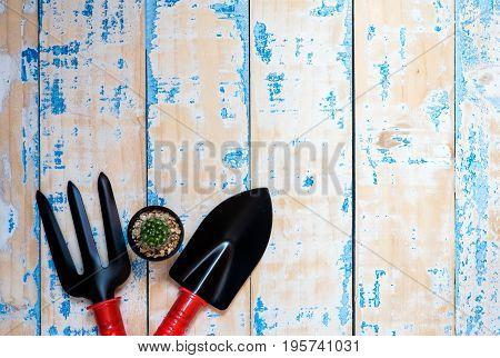 tool shovel for planting on grunge wood