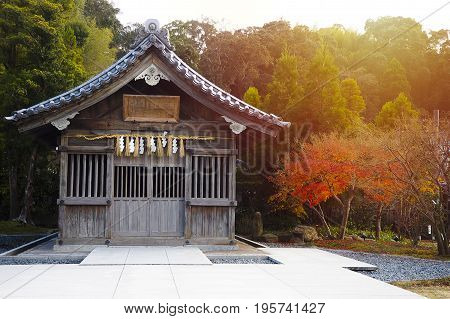 The landscape of the precinct in a shrine/Japan Fukuoka-ken Asakura-city with tree and sunrise background
