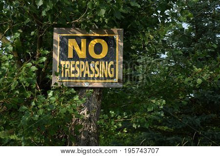 An image of an old yellow and black no trespassing sign hanging on a tree.