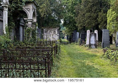 Savaged Jewish Cemetery Passage