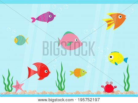 Fish set swimming at aquarium. Star crab seaweed stones bubbles water waves. Fish tank. Shining glass. Baby kids collection. Cute cartoon character Flat design Vector illustration