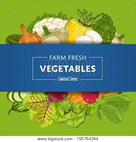 Farm fresh vegetable banner vector illustration. Natural growing, organic farming retail, vegan product store poster. Healthy food advertising with pepper, radish, cabbage, carrot, beet, patison