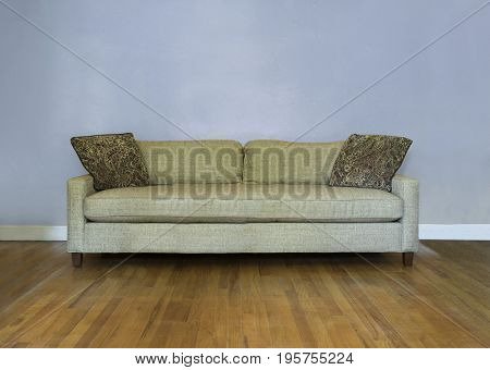 Classic mid-century couch against blank wall on wood floor