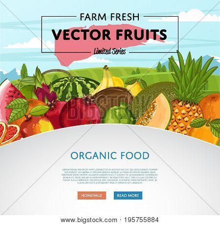 Fresh organic fruit poster vector illustration. Natural product growing, juicy fruit, healthy nutrition, organic farming, vegan food. Pineapple, melon, pomegranate, peach, coconut, apple, watermelon