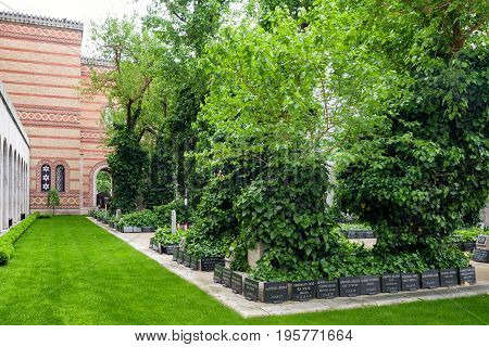 BUDAPEST HUNGARY - MAY 7: Graves in Great jewish synagogue on May 7 2017 in Budapest