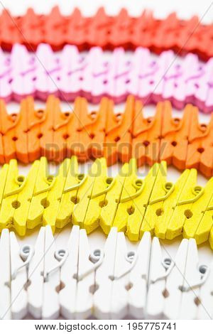 Colorful Wooden Small Pegs Lines With Selective Focus