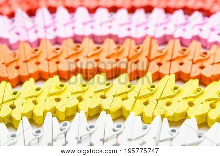 Colorful Wooden Small Pins Lines With Selective Focus