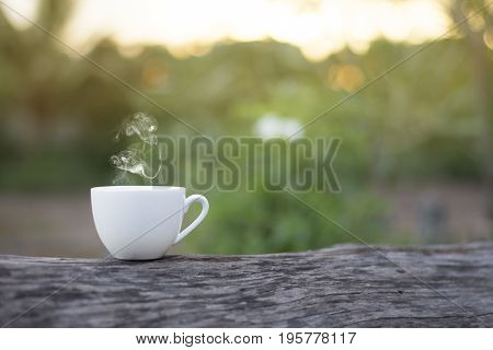 White cup morning coffee in garden and sunrise