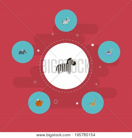 Flat Icons Waterbird, Horse, Chipmunk And Other Vector Elements