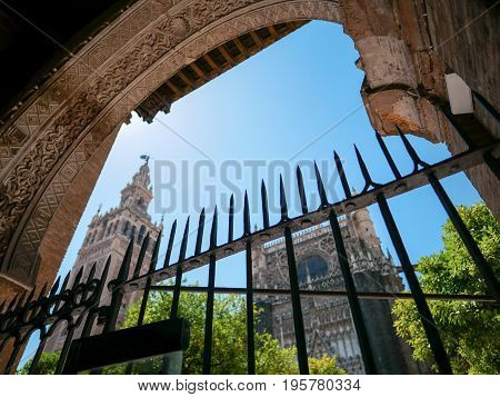 Low angle view of Seville Cathedral with a part of orange trees by looking through the fence in Seville Spain.