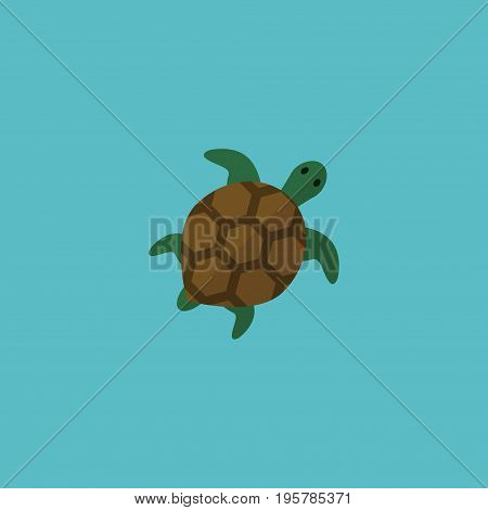 Flat Icon Turtle Element. Vector Illustration Of Flat Icon Tortoise Isolated On Clean Background