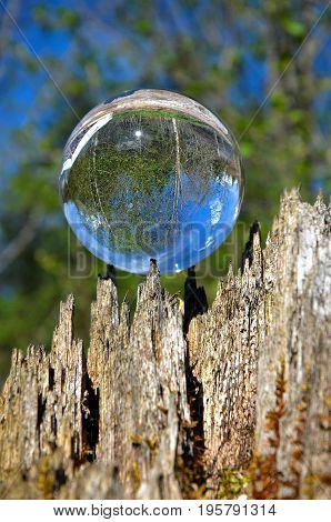 crystal ball in the wildness with reflecations