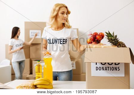 Picking the best ones. Confident altruistic stunning lady working in charitable organization and filling the boxes with food they sending to those in need