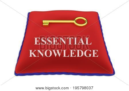 Essential Knowledge Concept